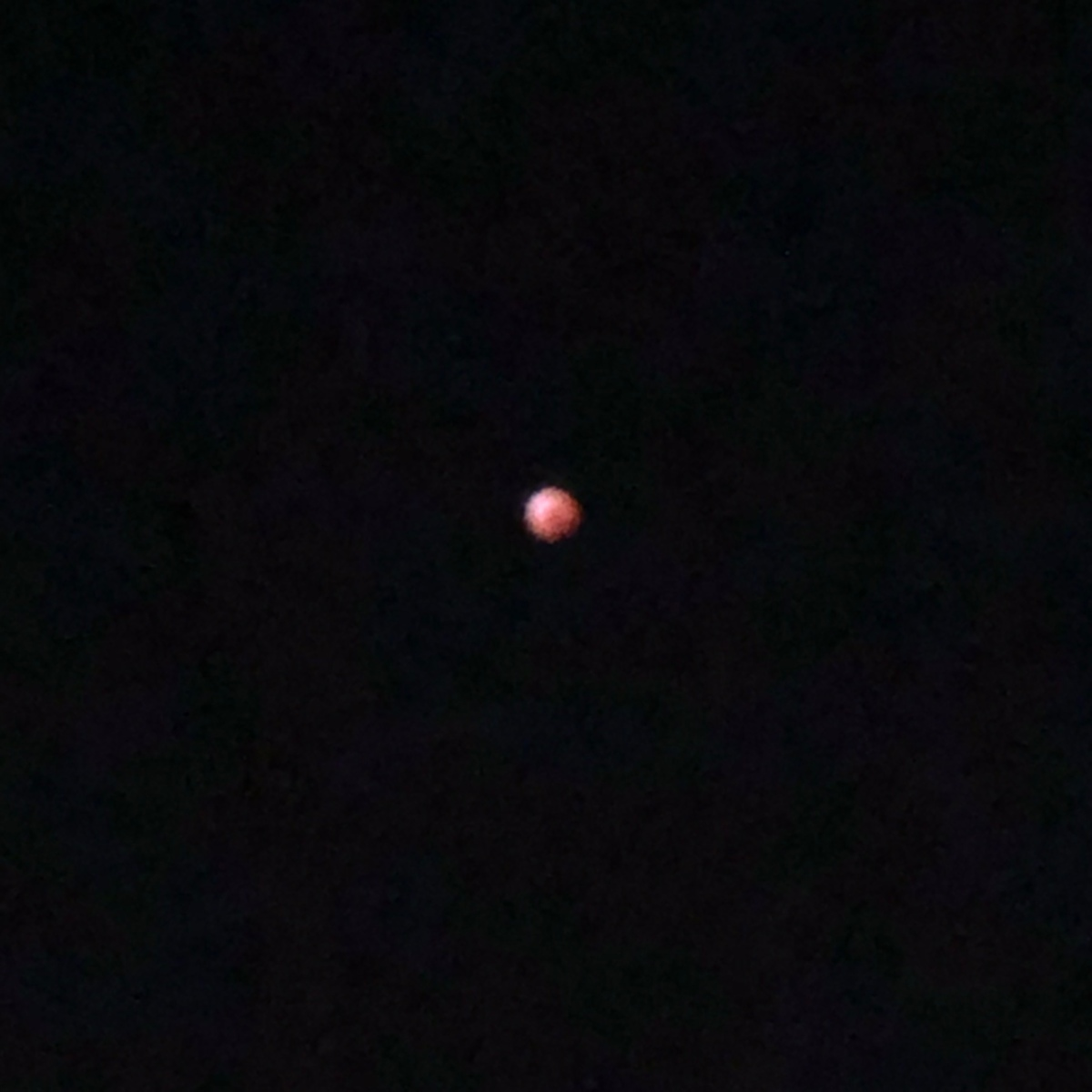 Lunar eclipse!
